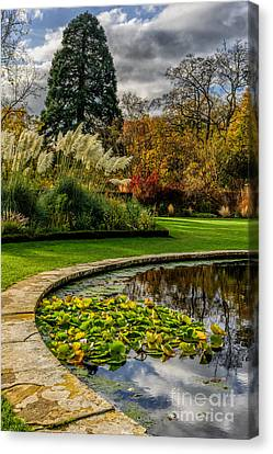 Autumn Garden Canvas Print by Adrian Evans