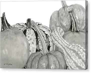 Autumn Harvest On White Canvas Print by Sarah Batalka