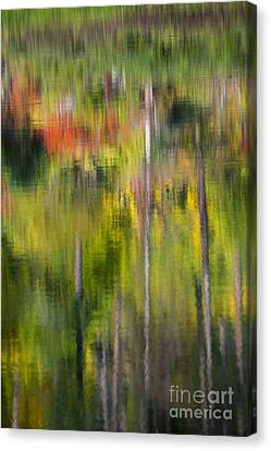 Autumn Impressions Canvas Print by Mike  Dawson