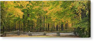 Autumn In Door County Canvas Print by Adam Romanowicz
