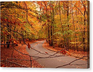 Autumn In Holmdel Park Canvas Print by Angie Tirado