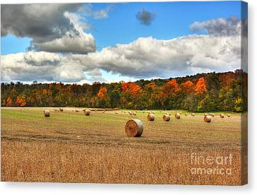 Autumn In Indiana Canvas Print by Mel Steinhauer