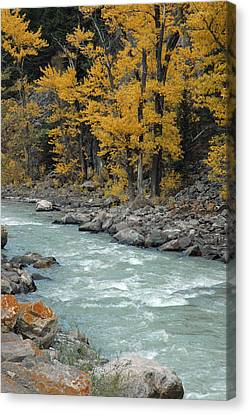 Autumn In Montana's Gallatin Canyon Canvas Print by Bruce Gourley