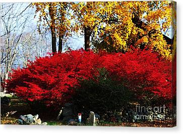 Autumn In New England 2 Canvas Print by Marcus Dagan