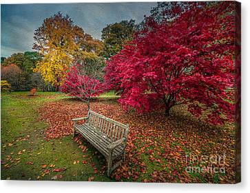 Autumn In The Park Canvas Print by Adrian Evans