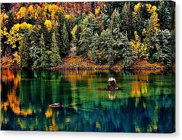 Autumn Jade Canvas Print by Benjamin Yeager