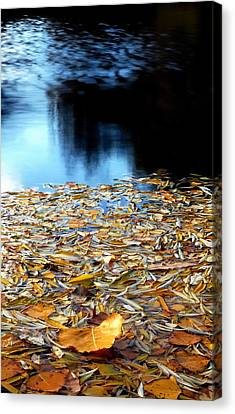 Autumn Lake Canvas Print by Steven Milner
