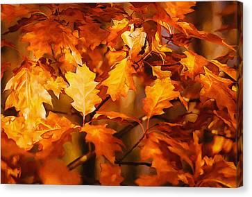 Autumn Leaves Oil Canvas Print by Steve Harrington