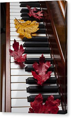 Autumn Leaves On Piano Canvas Print by Garry Gay