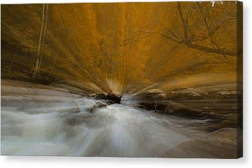 Autumn Light On Little River Canvas Print by Dan Sproul