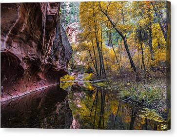 Autumn Mirror Canvas Print by Guy Schmickle