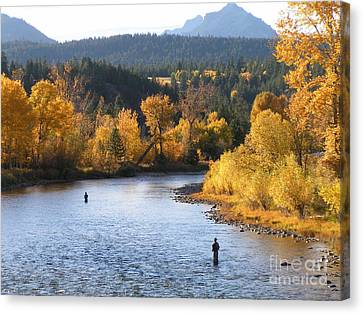 Autumn Montana Fly Fishing Canvas Print by John Cole