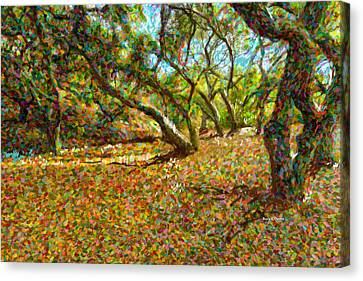 Autumn Oak Forest Canvas Print by Angela A Stanton