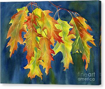 Autumn Oak Leaves  On Dark Blue Background Canvas Print by Sharon Freeman