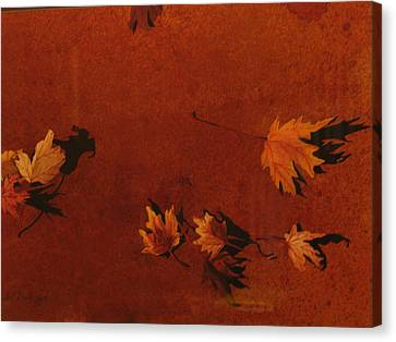 Autumn Offering Canvas Print by Carole Poole