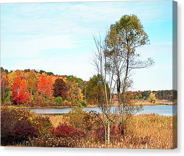 Autumn Pond Canvas Print by Aimee L Maher Photography and Art Visit ALMGallerydotcom