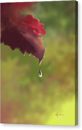 Autumn Rain Canvas Print by Kume Bryant