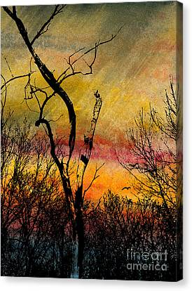 Autumn Rain Canvas Print by R Kyllo