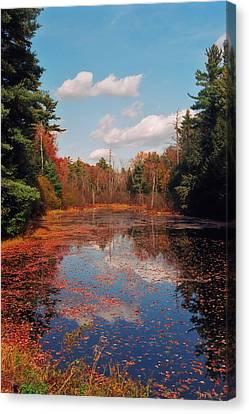 Autumn Reflections Canvas Print by Joann Vitali