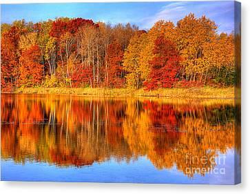Autumn Reflections Minnesota Autumn Canvas Print by Wayne Moran