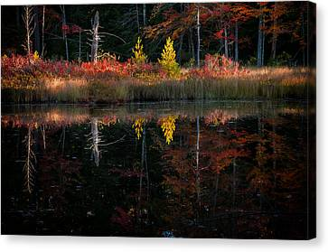 Autumn Reflections - Red Eagle Pond Canvas Print by Thomas Schoeller