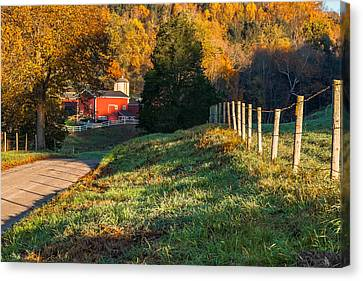 Autumn Road Morning Canvas Print by Bill Wakeley