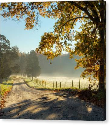 Autumn Road Square Canvas Print by Bill Wakeley