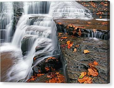 Autumn Rush Canvas Print by David Simons