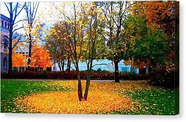 Autumn Series 1.1 Canvas Print by Derya  Aktas