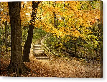 Autumn Stairs Canvas Print by Scott Norris