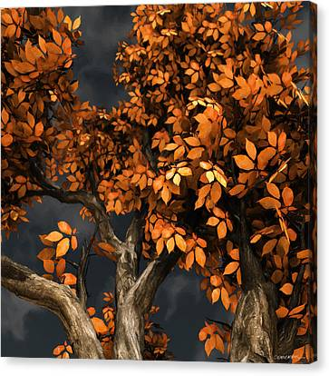 Autumn Storm Canvas Print by Cynthia Decker