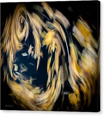 Autumn Storm Canvas Print by Steven Milner
