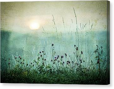 Autumn Sunrise Canvas Print by ?smund Kv?rnstr?m