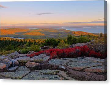 Down East Canvas Print featuring the photograph Cadillac Mountain Autumn Sunrise by Stephen  Vecchiotti