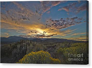 Autumn Sunset Canvas Print by Dianne Phelps