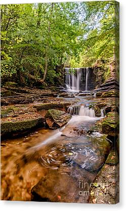 Autumn Waterfall Canvas Print by Adrian Evans