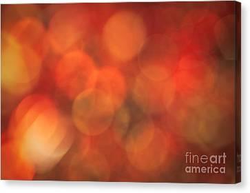 Autumnal Amber Canvas Print by Jan Bickerton