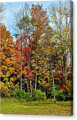Autumnal Foliage Canvas Print by Frozen in Time Fine Art Photography