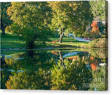 Autumns Beauty Canvas Print by Optical Playground By MP Ray