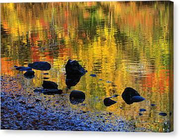 Autumns Rainbow Canvas Print by Karol Livote