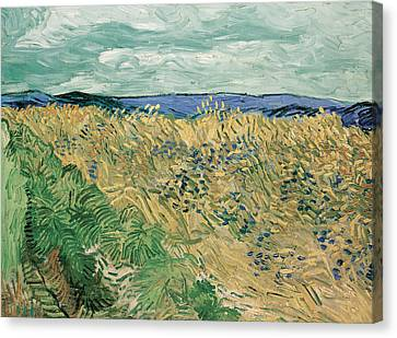 Auvers Sur Oise Canvas Print by Vincent van Gogh