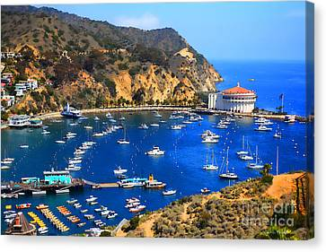 Avalon Harbor Canvas Print by Cheryl Young