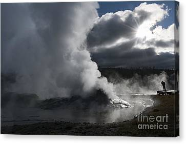 Awakening In Yellowstone Canvas Print by Sandra Bronstein