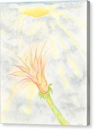 Awakening Canvas Print by Kim Sy Ok