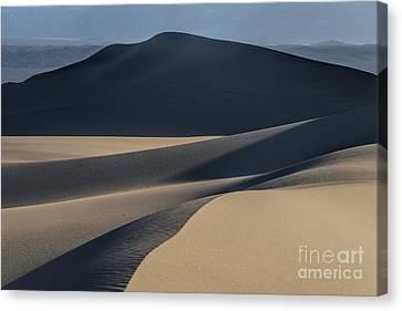 Awakening  Canvas Print by Sandra Bronstein