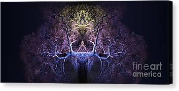 Awakening Canvas Print by Tim Gainey