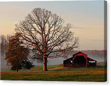 Sunrise Oak Red Barn Misty Morning Canvas Print by Reid Callaway