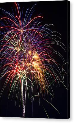 Awesome Fireworks Canvas Print by Garry Gay