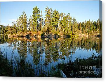 Awesub Morning Canvas Print by Larry Ricker
