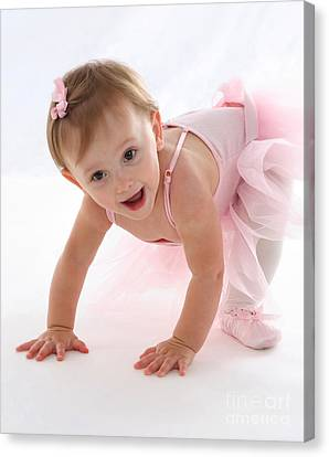 Baby Ballerina Canvas Print by Suzi Nelson